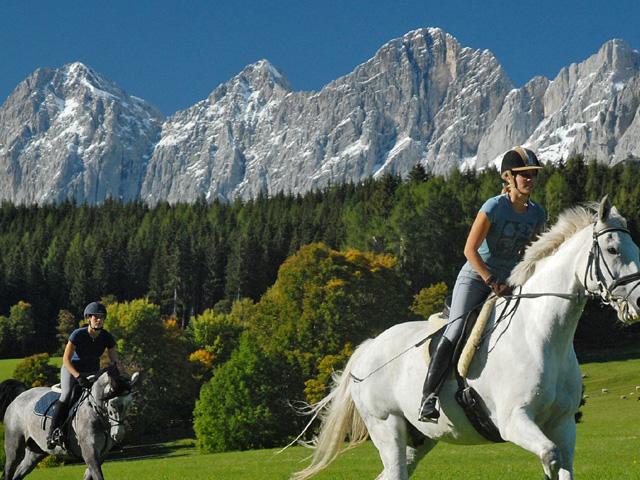 Oostenrijk paard rijden