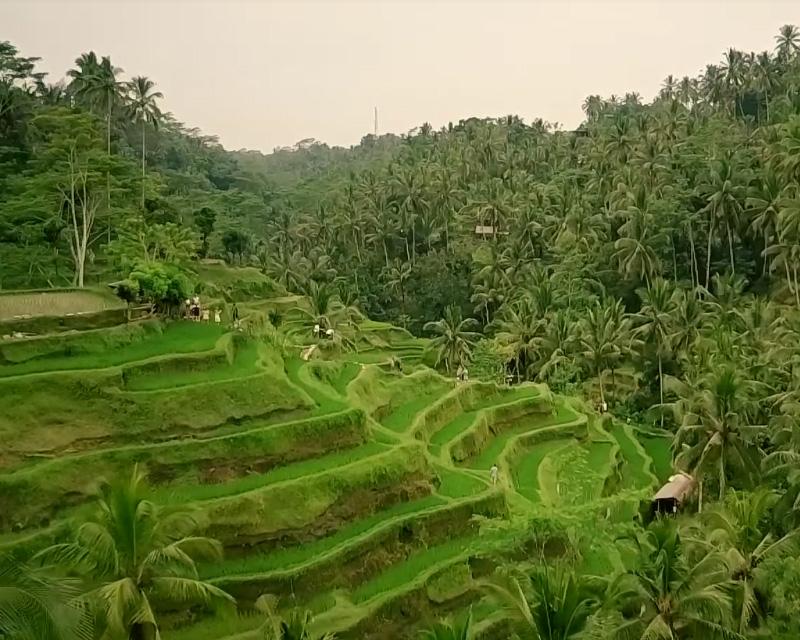 Indonesie Bali