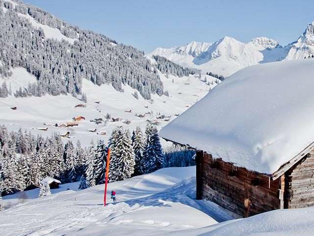 Zwitserland skien