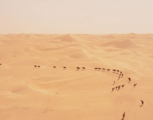 Dubai avontuurlijk